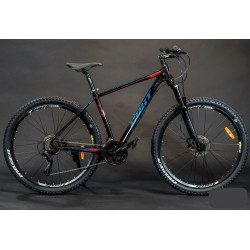BICYCLE GUST Exe 29cll